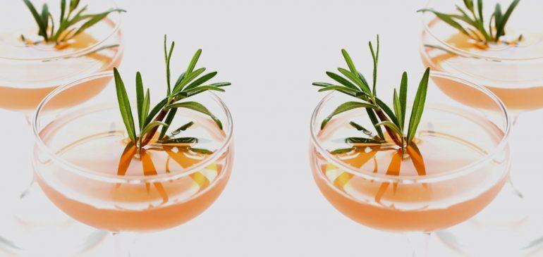 Drink refrescante de toranja e alecrim | Estilo ao Meu Redor