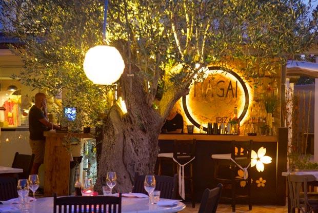 Restaurante Nagai, de um amigo