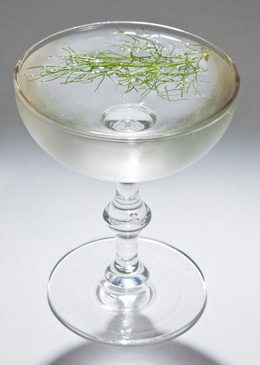 aquavit Compliment Cocktail