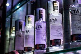 Freya Birch Spirit: um sabor selvagem nórdico